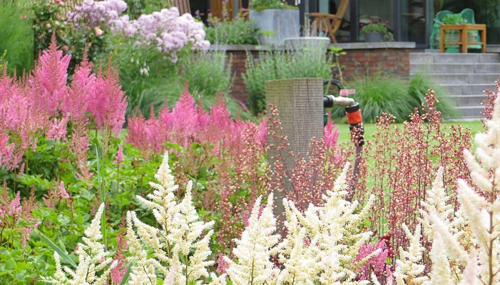 grote tuin met plantenborder en uitzicht op terras
