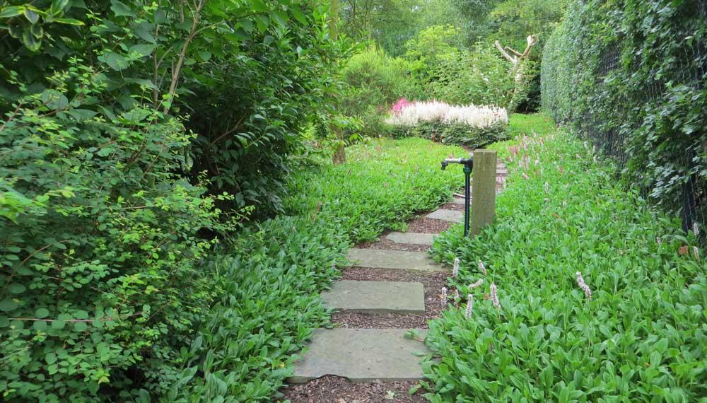 tegelpad richting achter tuin