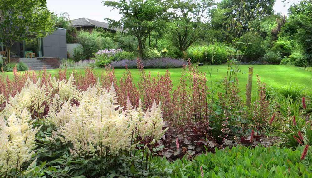 grote tuin met gazon en fraai bloeiende planten