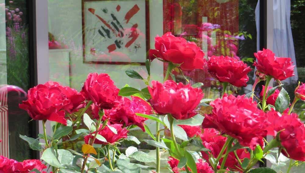 rode rozen voor serre