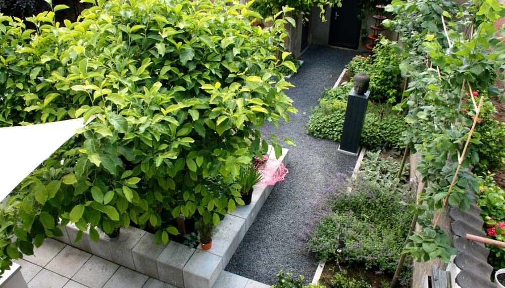 foto kleine strakke moderne tuin vanaf het balkon genomen